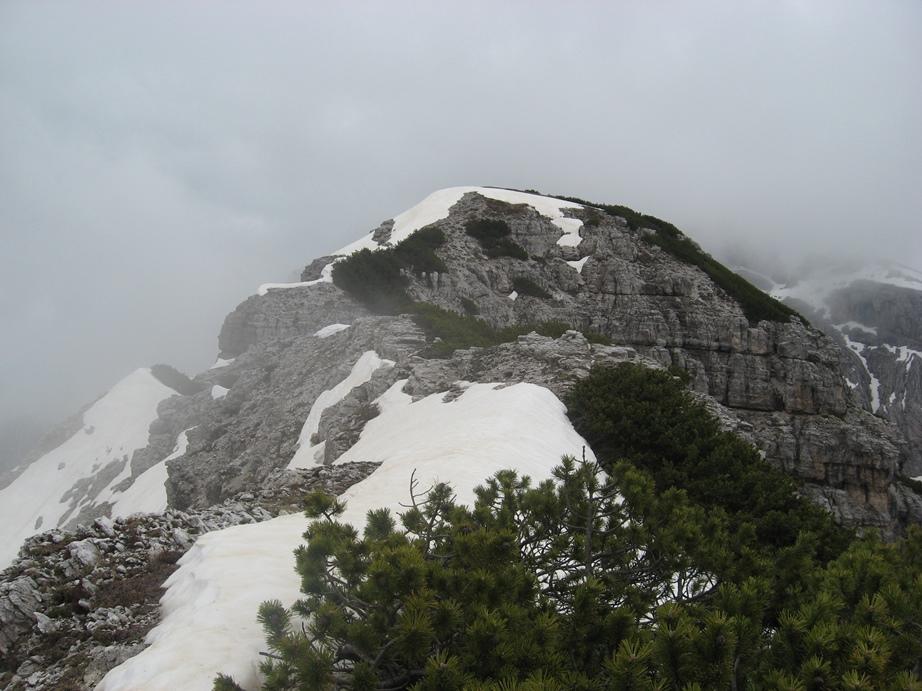 Neva00.jpg